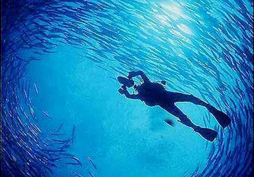 洪都拉斯风俗与习俗--最佳的潜水地