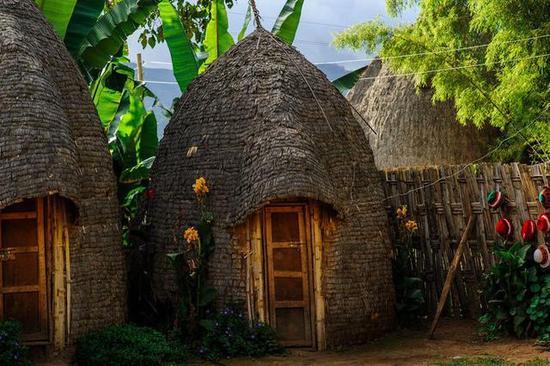 非洲传统野性 最后的原始部落文化习俗--Doze用树叶建屋子的都则族