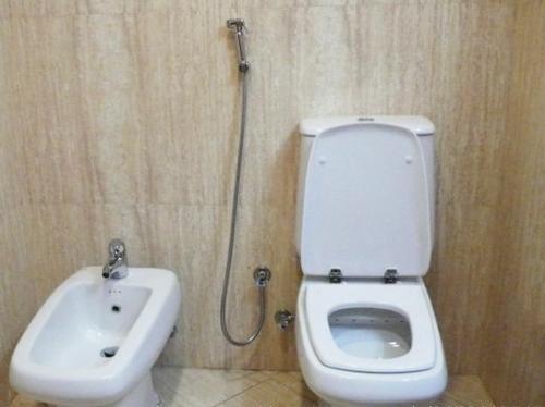 超神奇的阿拉伯国度 盘点阿联酋的奇风异俗--上完WC不用卫生纸用水枪